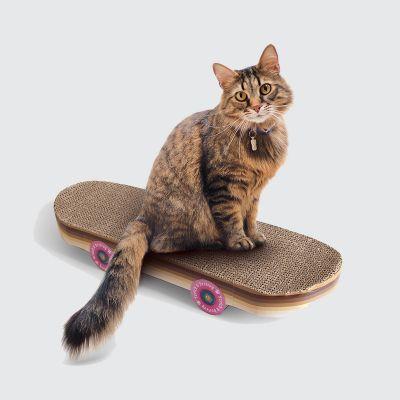 Kratz-Skateboard für Katzen