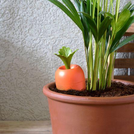 Care It Bewässerung für Blumentöpfe