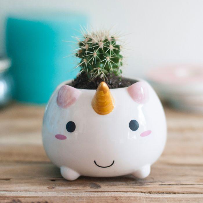 Einhorn Mini Blumentopf