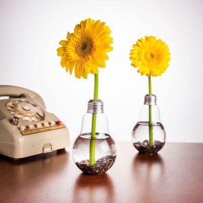 Geburtstagsgeschenk für Mama - Glühbirnen Vase 6er Set
