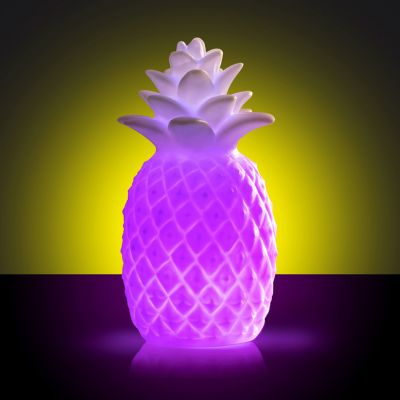 Geburtstagsgeschenk zum 30. - Ananas Leuchte mit Farbwechsel
