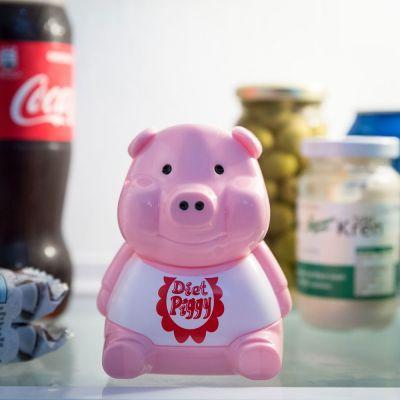 Geburtstagsgeschenk für Freund - Kühlschrank Diät Schweinchen