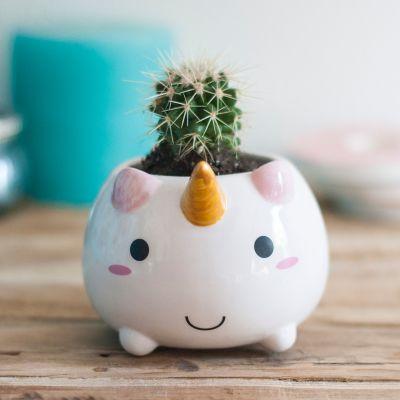 Romantische Geschenke - Einhorn Mini Blumentopf