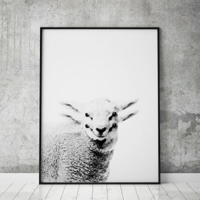 Poster - Poster Lamm by MottosPrint