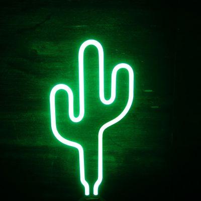 Beleuchtung - Kaktus Neon Leuchte