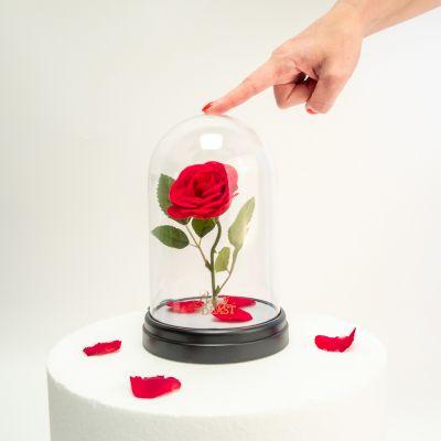 Disney - Die Schöne und das Biest: Verzauberte Rosen Leuchte
