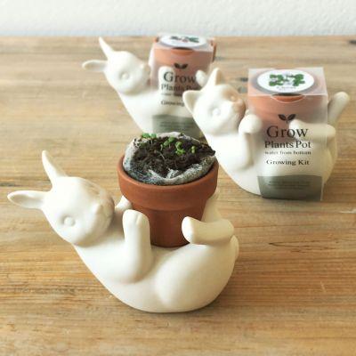 Make Your Own - Blumentopf-Freunde Katze & Hase
