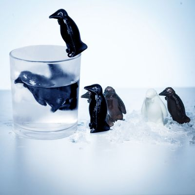 Nikolausgeschenke - Pinguin Coolers