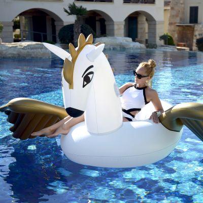Draussen - Aufblasbarer Pegasus