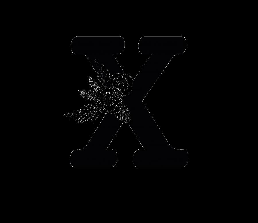 BAMOXT - X